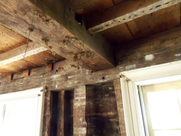 First floor ceiling beams