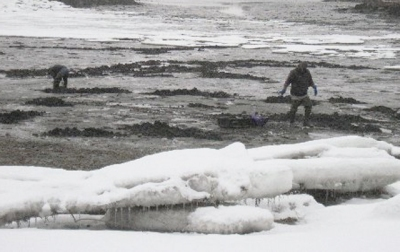 Clamming in the winter