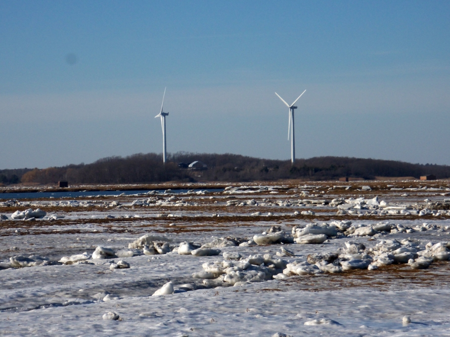 Two wind turbines today stand at the location on Town Farm Road originally proposed for a nuclear power plant.