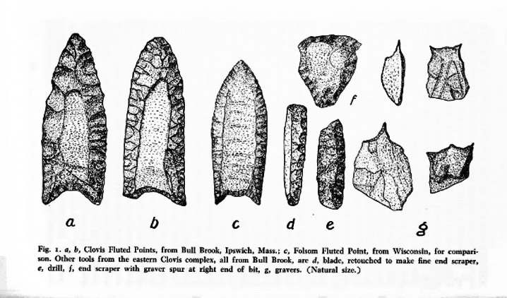 Stone points from the Bull Brook PaleoIndian site in Ipswich MA