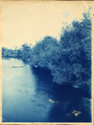 River and trees cyanotype by Arthur Wesley Dow