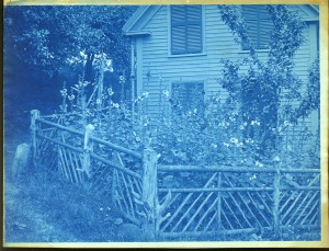 Dow house and flowers cyanotype by Arthur Wesley Dow