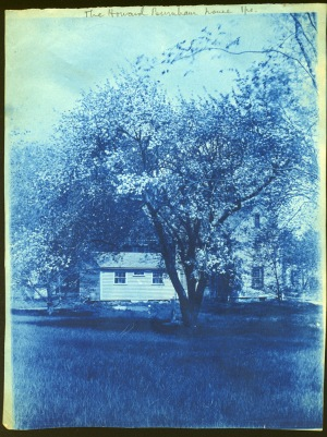 Howard Burnham house and tree cyanotype by Arthur Wesley Dow