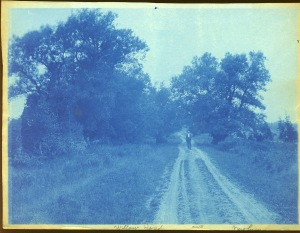 Dow walking cyanotype by Arthur Wesley Dow