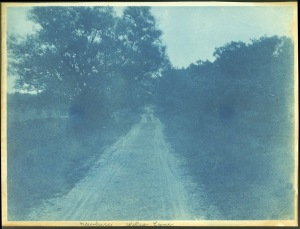 Winding road cyanotype by Arthur Wesley Dow