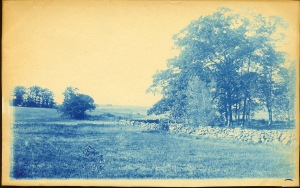 Field and stone wall cyanotype by Arthur Wesley Dow
