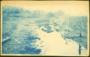 Wet field and fence cyanotype by Arthur Wesley Dow