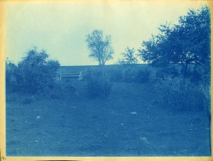 field with fence cyanotype by Arthur Wesley Dow