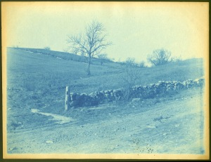 Stone wall and field cyanotype by Arthur Wesley Dow