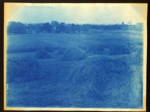 More hay stacks cyanotype by Arthur Wesley Dow