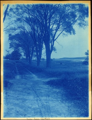 Near Sam Spillar's cyanotype by Arthur Wesley Dow