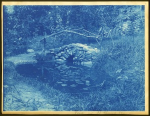 Lilly pond and bridge cyanotype by Arthur Wesley Dow