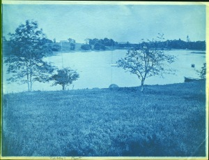 Nabby's Point cyanotype by Arthur Wesley Dow