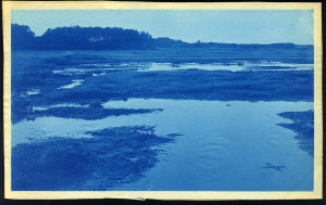 Ripple in the water cyanotype by Arthur Wesley Dow