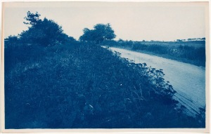 Argilla Road Hogtown cyanotype by Arthur Wesley Dow