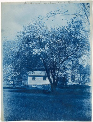 The Howard Burnham house cyanotype by Arthur Wesley Dow