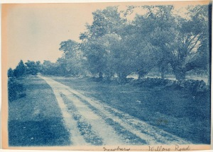 Willow Road cyanotype by Arthur Wesley Dow