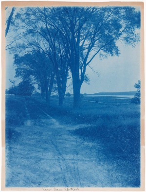 Spiller's Lane cyanotype by Arthur Wesley Dow