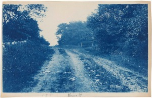 Spring St reet in 1897 cyanotype by Arthur Wesley Dow