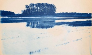 Salt Marsh island cyanotype by Arthur Wesley Dow