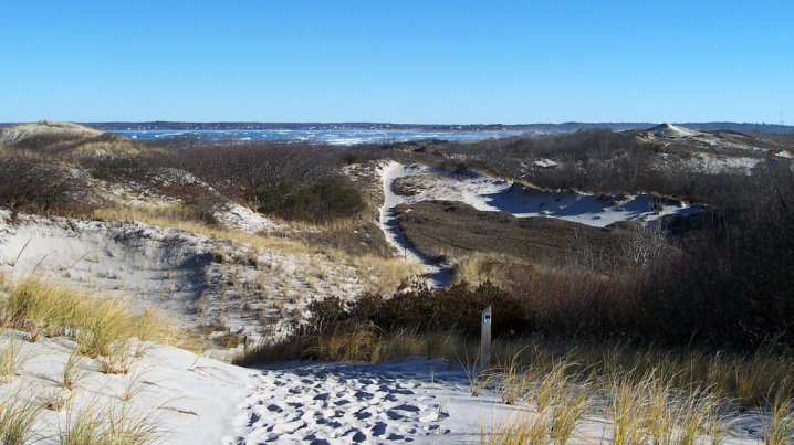 View of Ipswich Bay from a dune at Castle Neck