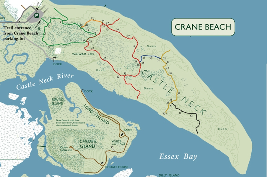 Castle Neck, showing the marked dune trails