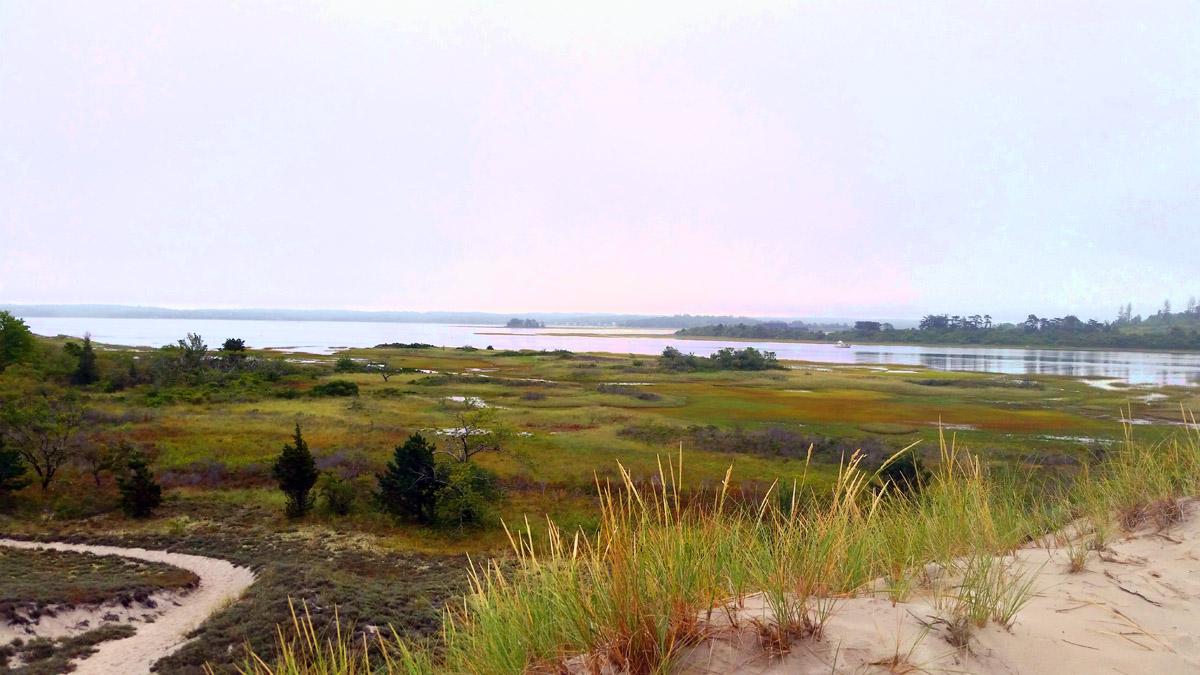View of Essex Bay from Wigwam Hill