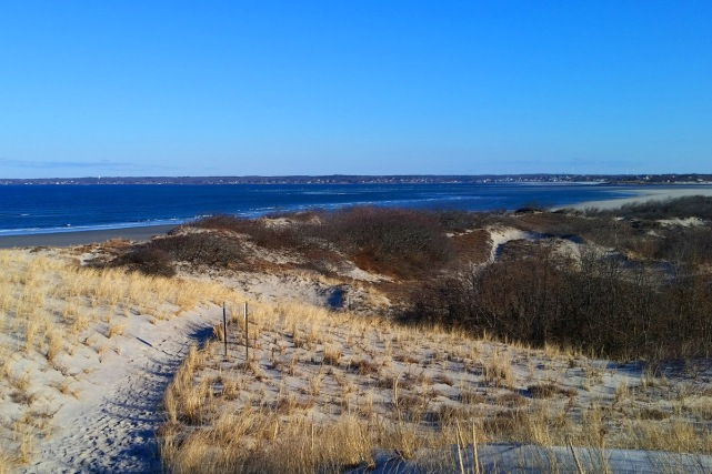 View of Ipswich Bay from a dune on Castle Neck