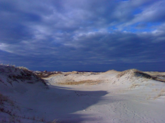 The far end of Castle Neck is devoid of trees. The valleys in the dunes provide shelter and warmth even on a cold day.