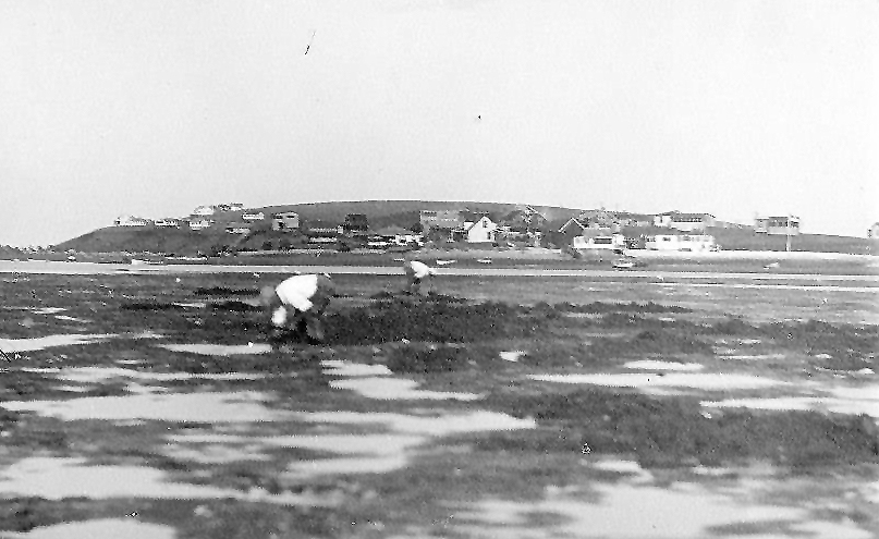 An earlier photo with Little Neck in the background, courtesy of Linda George Grimes