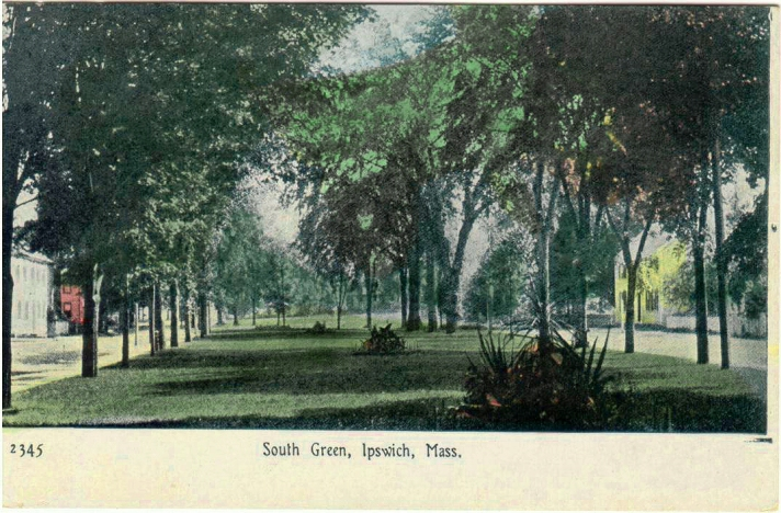 South Green