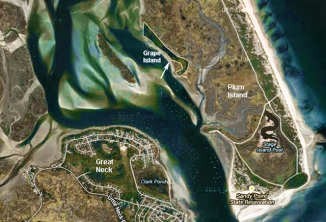 Grape Island is between Plum Island and Great Neck