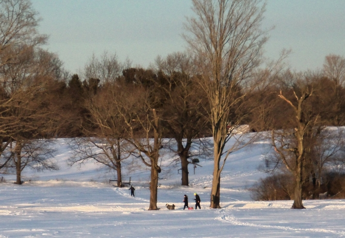 Appleton Farms Grass Rides, cross-country  skiing, February  2015