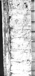 Wattle and Daub shown in an exposed wall in the Burnham - Giddings House in Ipswich MA