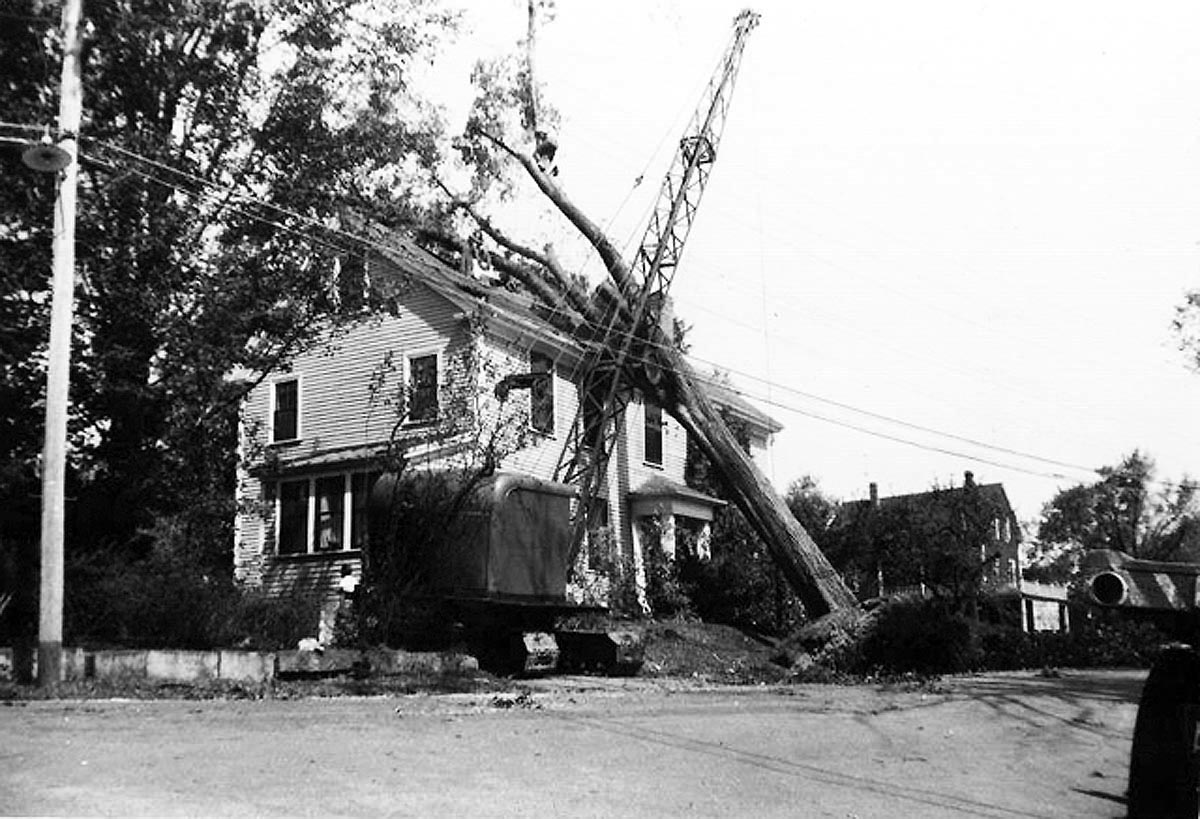 During the 1938 hurricane, a large elm crashed into the roof of 62 East St.