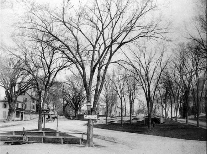 Looking up from the foot of the North Green, 1880