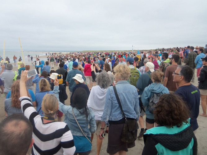 There were so many people that the Strandbeests could barely move.