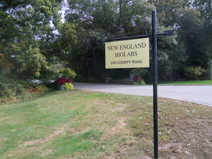 Entrance to New England Biolabs on County Rd. across from Appleton Farms