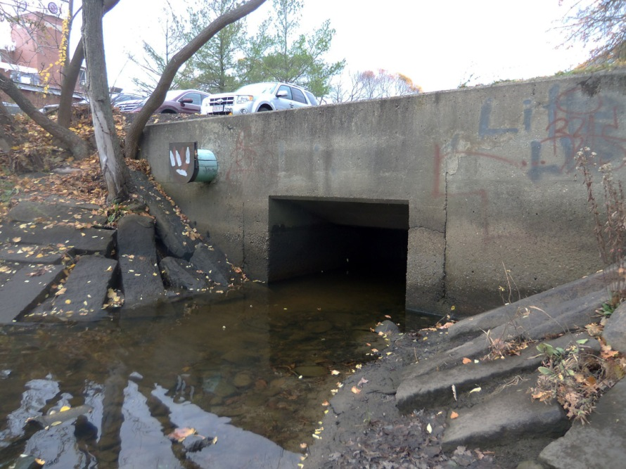 Farley Brook dumps into the Ipswich River behind Market Street