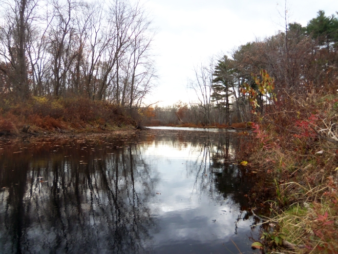 The Grand Wenham Canal  starts at the Ipswich River near the Topsfield Linear Common bridge over the River.