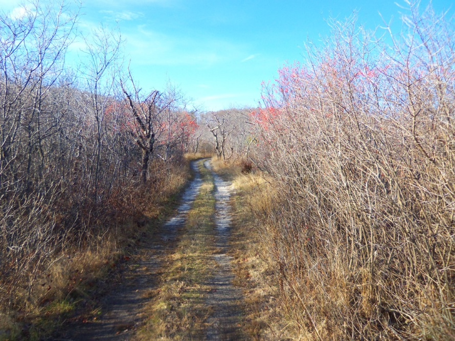 The trail to Castle Hill starts near the Ipswich residents parking lot.