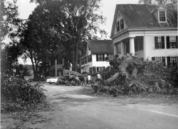 County Rd., The Columns after a storm