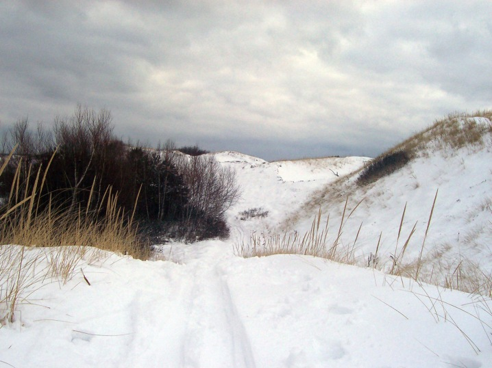 Cross-country skiing in the Castle Neck dunes, Ipswich.