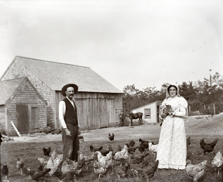 Farmers and chickens by George Dexter