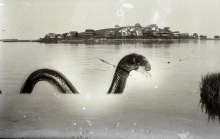 Little Neck Sea Serpent by George Dexter