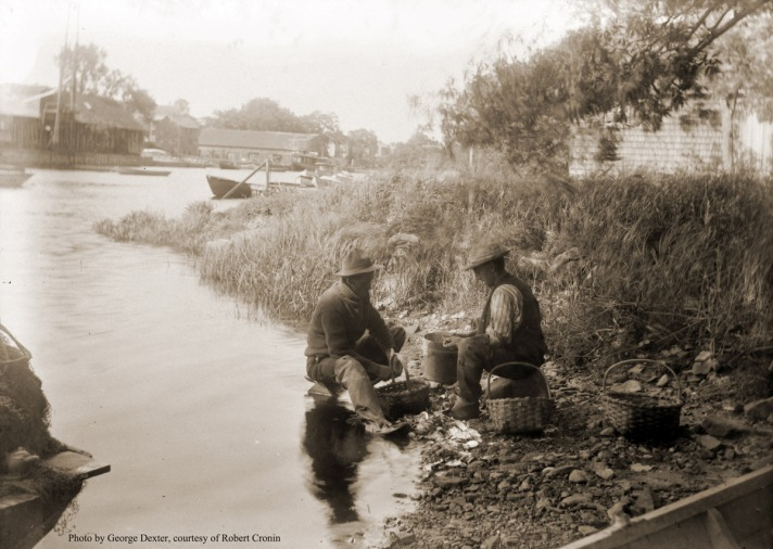 Shucking clams on Turkey Shore. Glover's and Brown's Wharves are across the River. Photo by George Dexter.