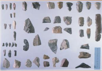 Stone points discovered at Bull Broo