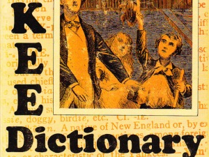 Yankee Dictionary