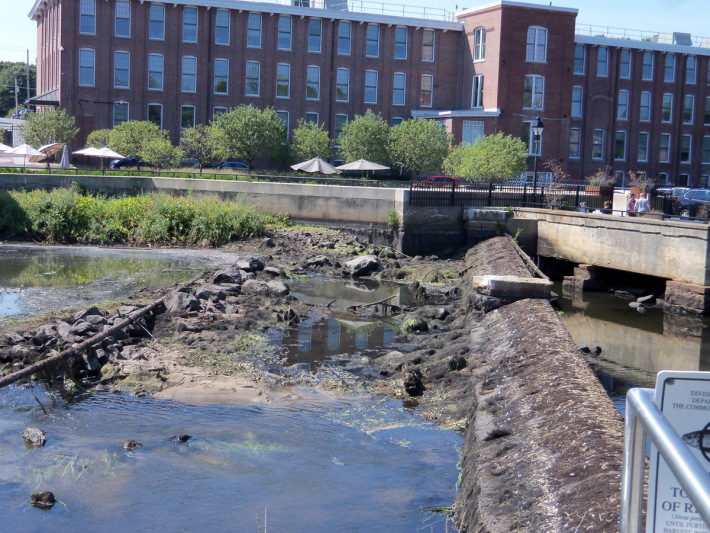 Ipswich Mill dam drawdown
