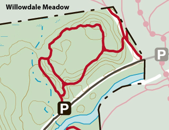 willowdale_meadow